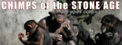 Chimps of the Stone Age