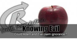 Knowing Evil