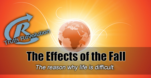 the-effects-of-the-fall
