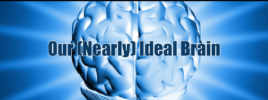 Our (Nearly) Ideal Brain