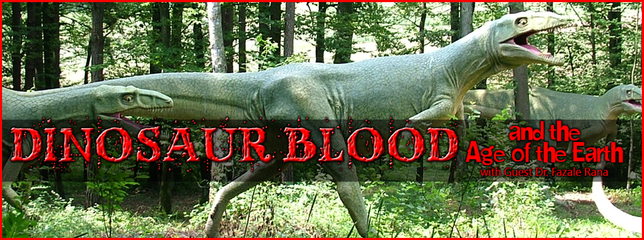 Dinosaur Blood and the Age of the Earth