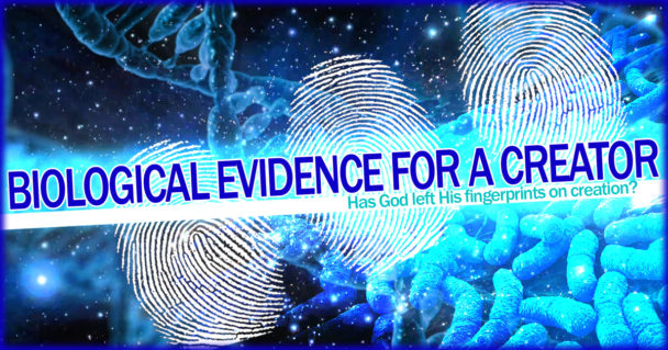 biological-evidence-for-a-creator